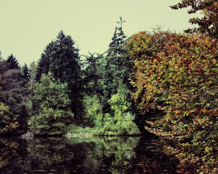 natur fotos
