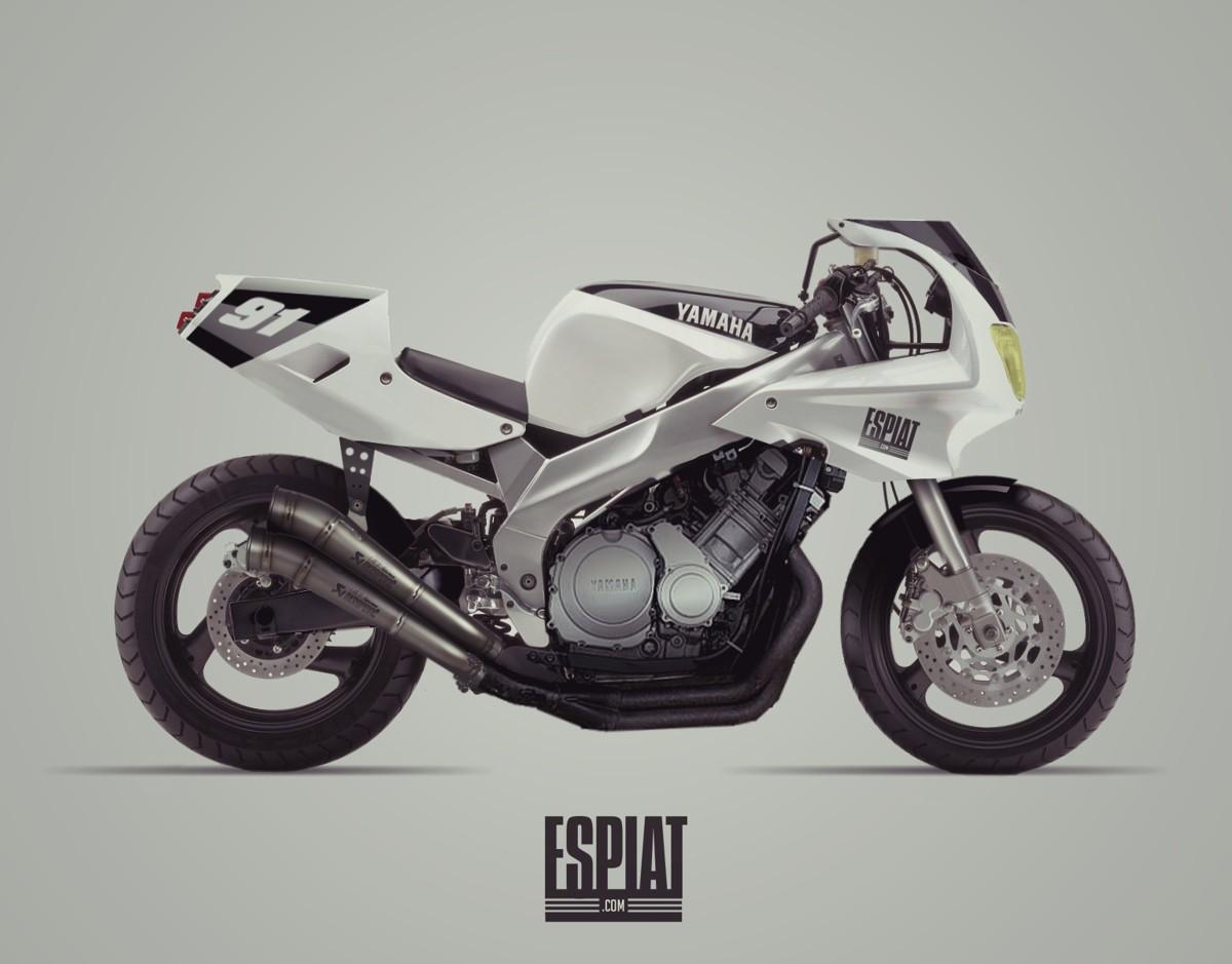 Yamaha Fzr Genesis Fairing