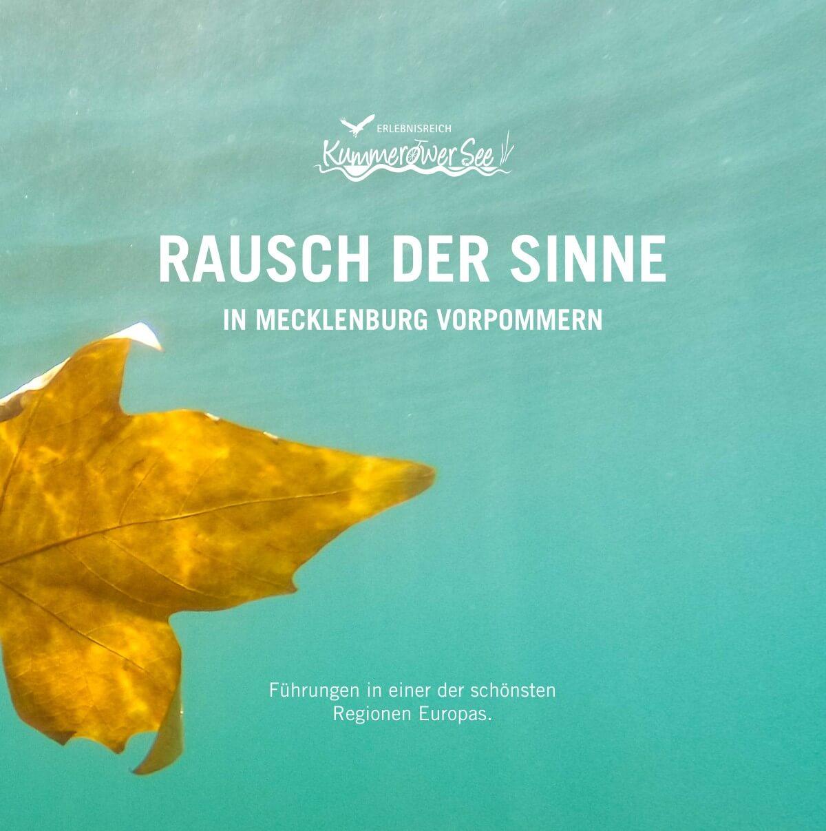 flyer-naturerlebnisse-kummerower-see-fuehrungen
